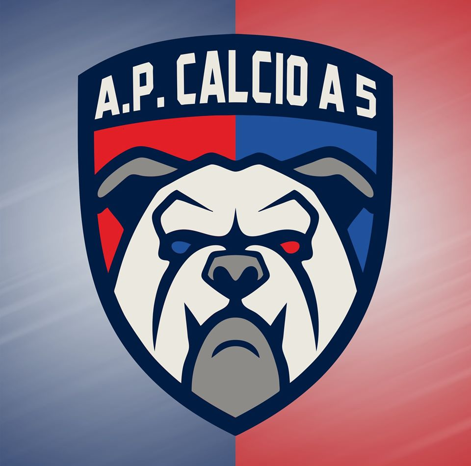 AP CALCIO A 5