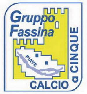 GRUPPO FASSINA